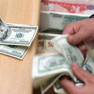 Merkez Bankası'nın yıl sonu dolar beklentisi !