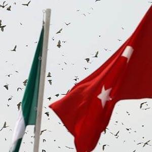 Erdoğan'a Nijerya'da 'yarasa' sürprizi