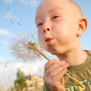 10 adımda polenlerden korunun