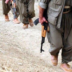 Şanlıurfa'da PKK'lı terörist yakalandı !