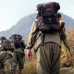 Mehmetçiğe hain tuzağı kuran PKK'lı terörist yakalandı