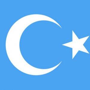 Doğu Türkistan'ın acı günü