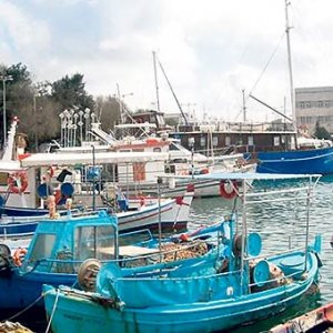 Yunanistan Türk denizciyi serbest bıraktı