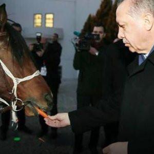 Erdoğan bu hediyeyi beklemiyordu