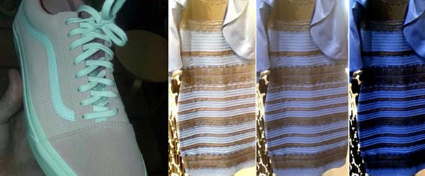 Sosyal medya sallanıyor: Bu ayakkabı ne renk ?