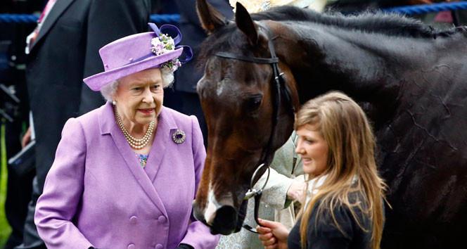 Kraliçe Elizabeth at yarışından servet kazanıyor !