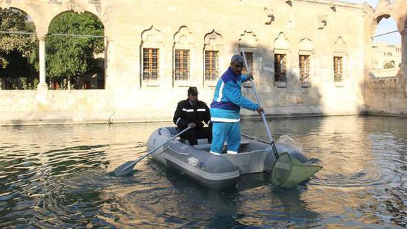 Balıklıgöl'de yüzük operasyonu !