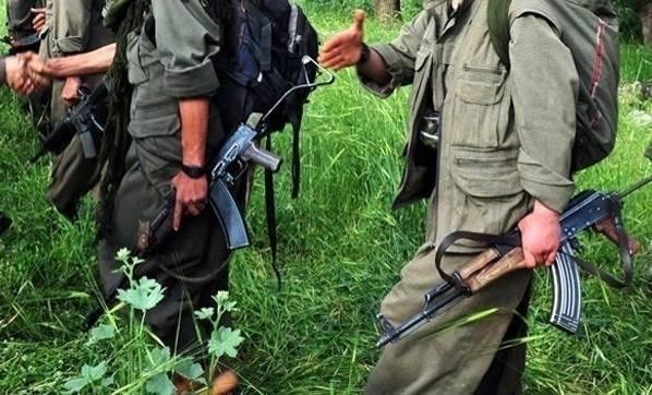 Bingöl'de 5 PKK'lı öldürüldü