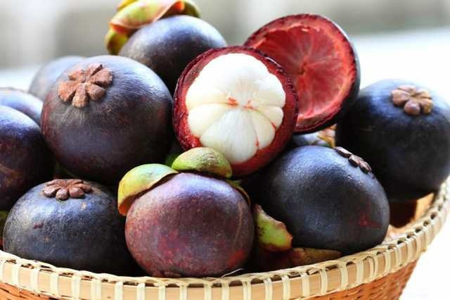 Mangosteen meyvesinin mucizevi faydaları