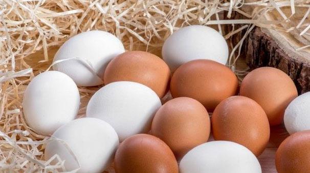 Yumurtanın fiyatı dip yaptı !