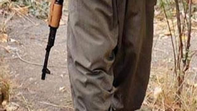 Bingöl'de 1 PKK'lı terörist yakalandı