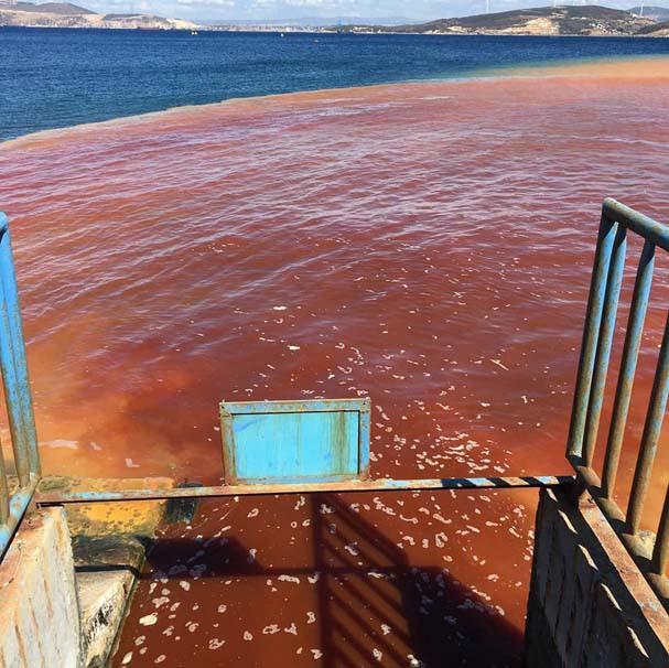 İzmir'de deniz kırmızıya boyandı