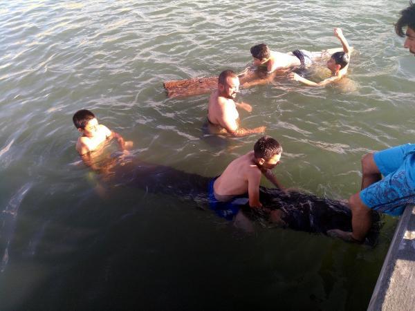 Akdeniz sahilleri değil, Çıldır Gölü