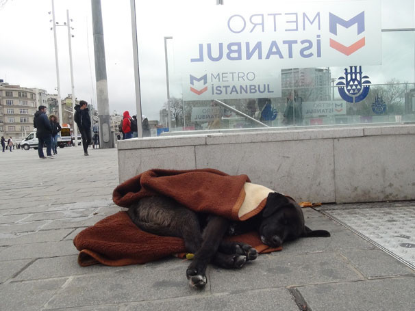 Taksim Metrosu'nda duygulandıran görüntü