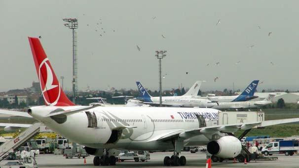 Atatürk Havalimanı'nın kuşlar istila etti