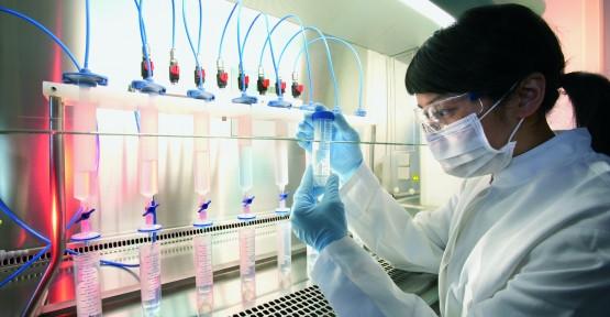 Erkeklere kötü haber ! Bilim insanları laboratuarda sperm üretti