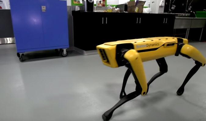 Birbirleriyle yardımlaşan robotlar!