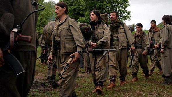 Sincar'da flaş PKK'lı terörist iddiası !