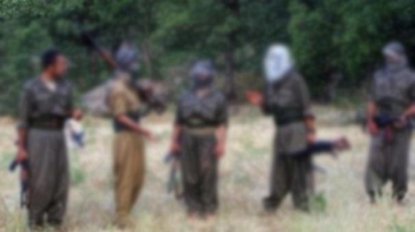 CIA'den PKK/PYD itirafı