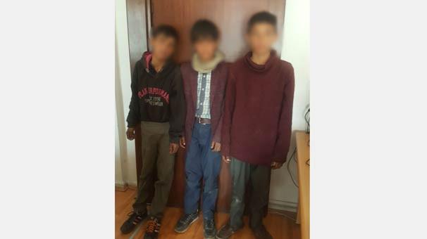 14 yaşında 3 erkek çocuğu... Polis bile şaşırdı