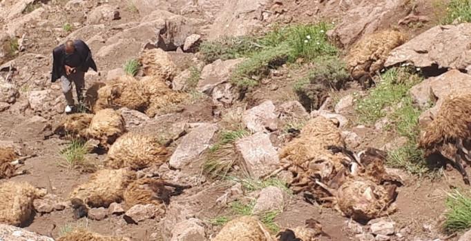Önce bir koyun daha sonra hepsi atladı