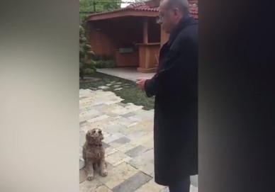 Damadı paylaştı ! Erdoğan soğuk olduğunu farkedince...