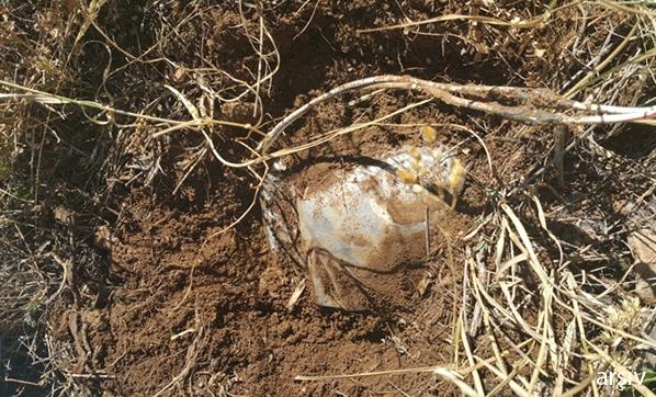 Kars'ta toprağa gömülü halde bulundu