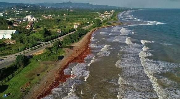 Tüm sahil şeridi kırmızıya büründü