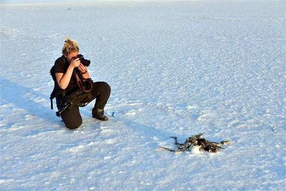 Tuz Gölü'nde ürküten tablo