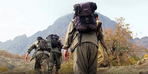 Bingöl'de teröristlerle sıcak temas ! Hepsi öldürüldü