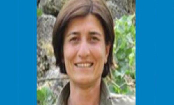 TSK açıkladı ! Mavi listedeki terörist öldürüldü