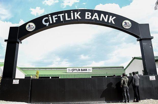 Çiftlikbank'ın aranan ismi İstanbul'da yakalandı