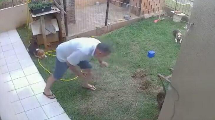 Böceklerden kurtulmak isterken, bahçesini havaya uçurdu!