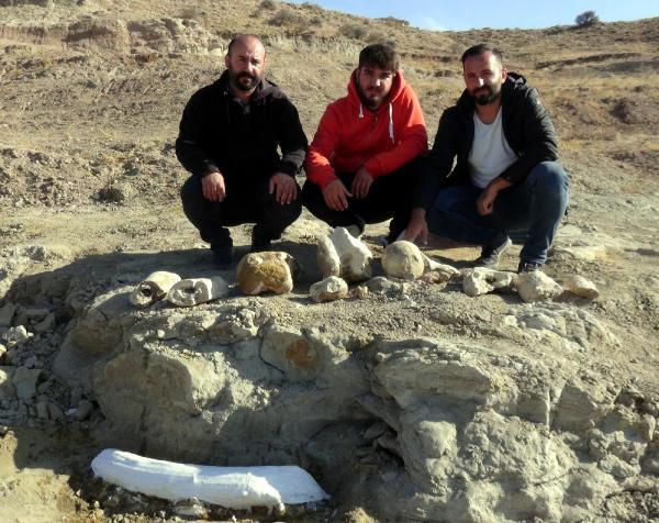 Kayseri'de 7,5 milyon yıllık bir keşif daha