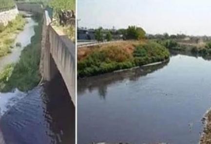 Kanalda su değil, zehir akıyor!