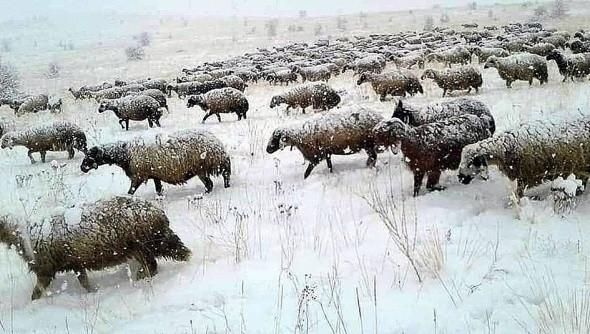 Erzincan'da kartpostallık görüntüler