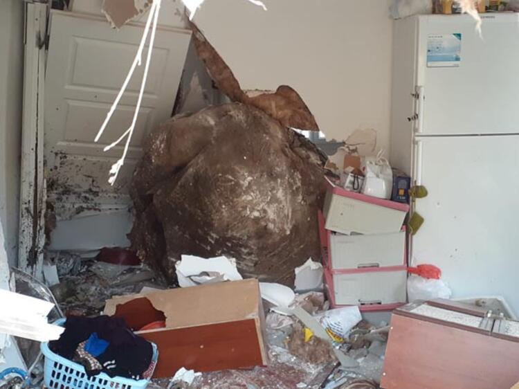 Dağdan geldi, evin duvarını delip salona girdi!