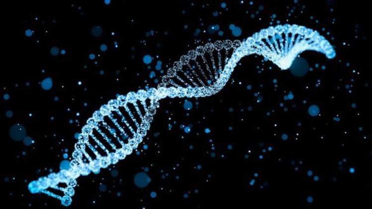 ''Çok alkol almak DNA'yı bozuyor''