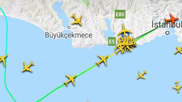 Atatürk Havalimanı'nda köpek hareketliliği