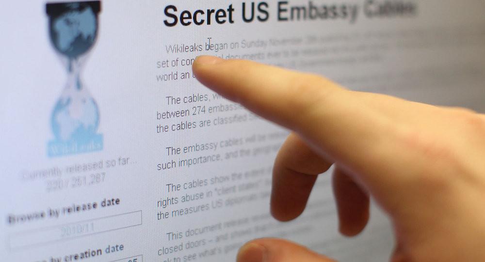 WikiLeaks'ın bilgi kaynağı gözaltında