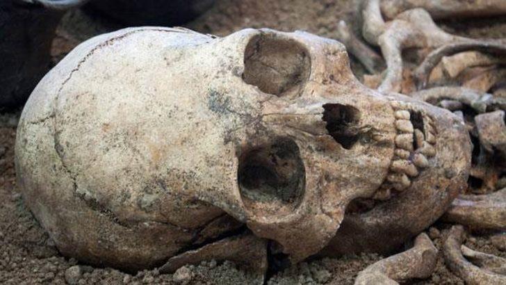 Yeni bir insan türüne ait fosiller bulundu