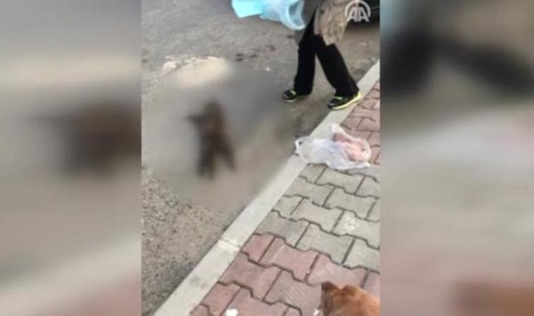 İstanbul'da kan donduran vahşet