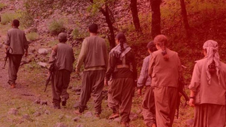 Yakalanan terörist PKK'nın gerçek yüzünü anlattı !