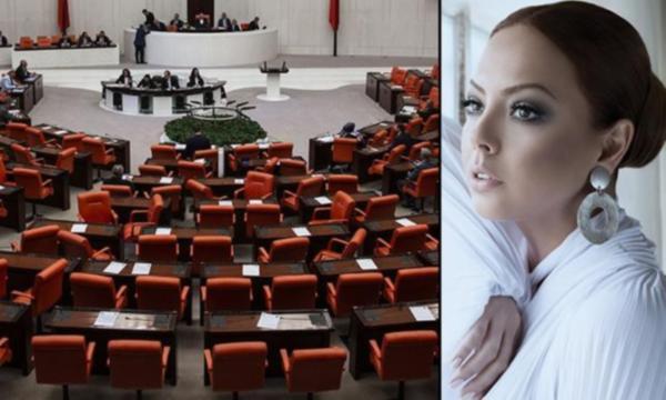 TBMM'de VIP tartışması: Ebru Gündeş örnek gösterildi