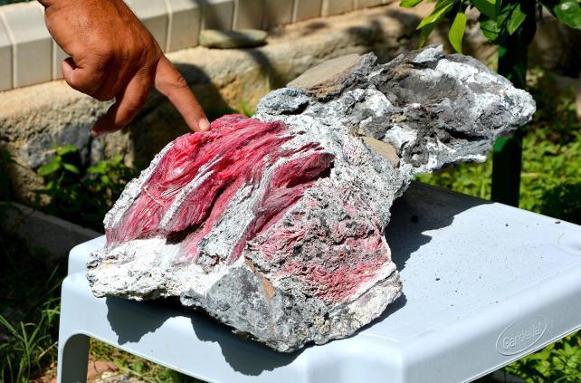 Datça'da yüzerken fosil bulud