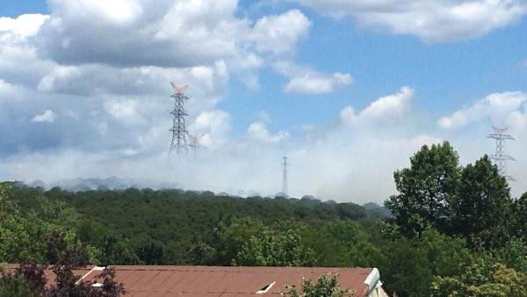 Sarıyer'de orman yangını ! Kontrol altına alındı