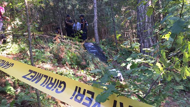 Zonguldak'ta ayı saldırısı: 1 kişi öldü 1 kişi kaçtı