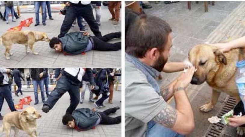 Taksim'in 'Eylem'i hayatını kaybetti