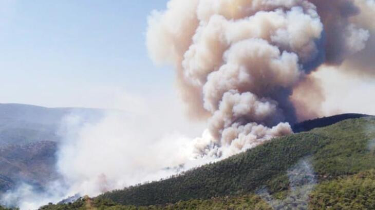 Ciğerlerimiz yandı: İzmir'de 500 hektarlık orman yangını