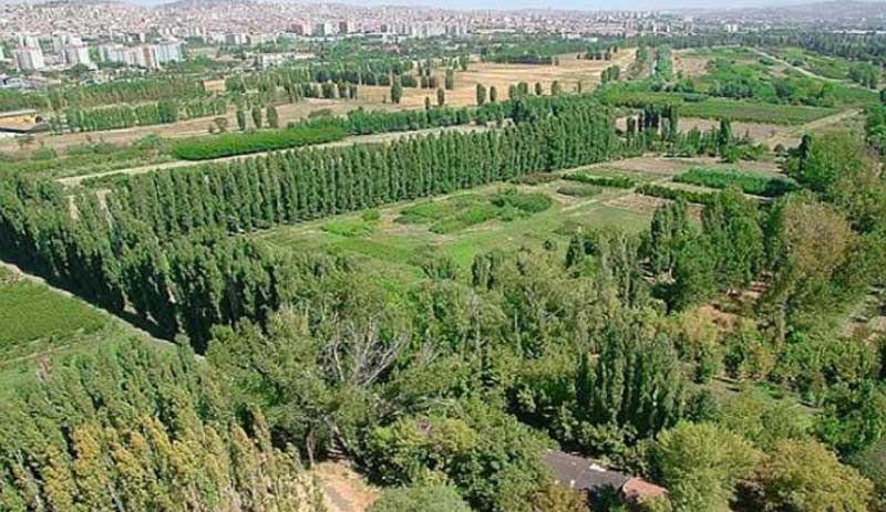 Atatürk Orman Çiftliği inşaattan kurtuldu!